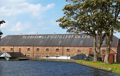 Винокурня Bushmills  - фото