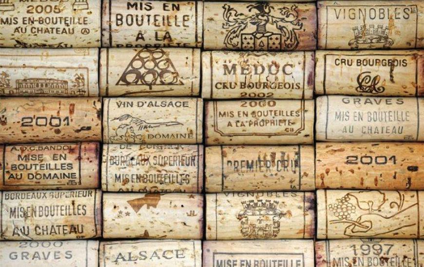 История великих вин Франции - фото