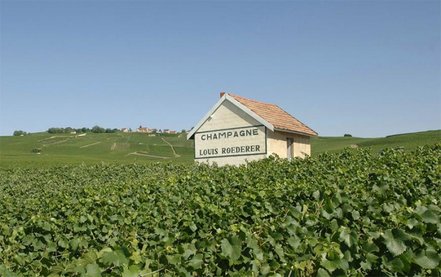 Шампанский дом Луи Редерер - фото