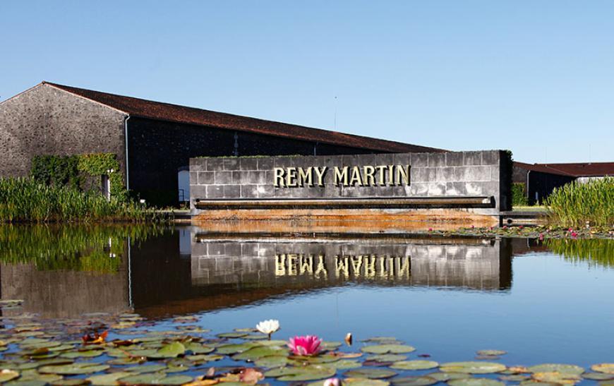 История дома Remy Martin - фото
