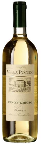 Villa Puccini Pinot Grigio Delle Venezie, 2015 фото