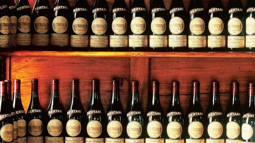 Итальянские вина - картинка